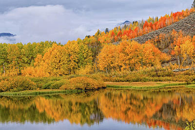 Photograph - Orange Aspen Reflected In The Oxbow  by Kathleen Bishop