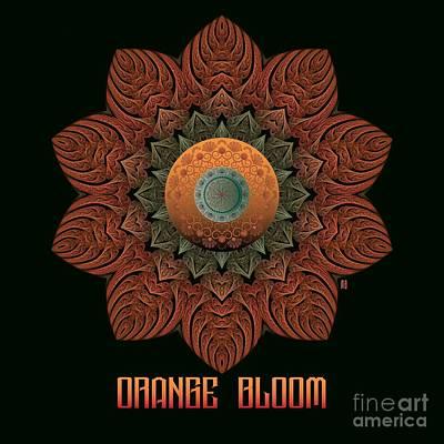 Digital Art - Orange Bloom M B by Doug Morgan
