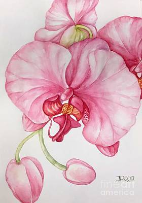Painting - Orchid by Inese Poga