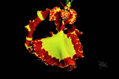 Orchid Study Nine Art Print