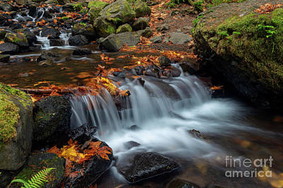 Photograph - Oregon Autumn Cascade by Mike Dawson