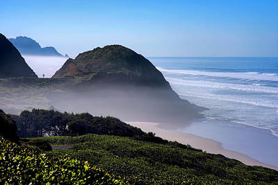 Photograph - Oregon Central Coast Hwy 101 022319 by Rospotte Photography