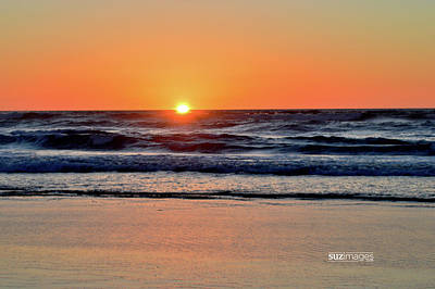 Photograph - Oregon Coast Hwy 101 by Susie Loechler