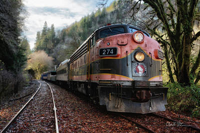 Photograph - Oregon Coast Railroad by Charlie Duncan