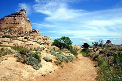 Photograph - Oregon Trail by Wweagle