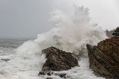 Photograph - Oregon Wild Waves by Wes and Dotty Weber