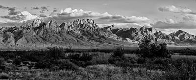 Photograph - Organ Mountains - Black And White by Loree Johnson