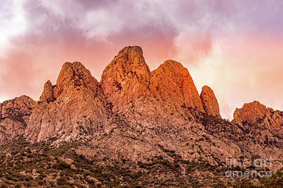 Photograph - Organ Mountains by Blake Webster