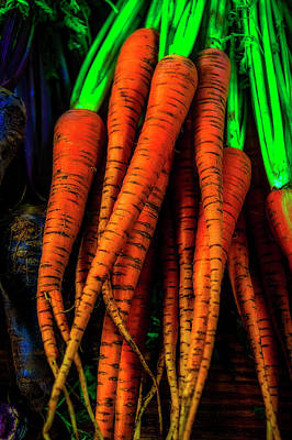 Photograph - Organic Carrots by Garry Gay