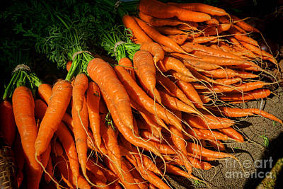 Photograph - Organic Carrots by Olivier Le Queinec
