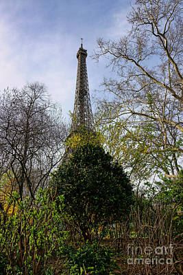 Photograph - Organic Eiffel Tower by Olivier Le Queinec