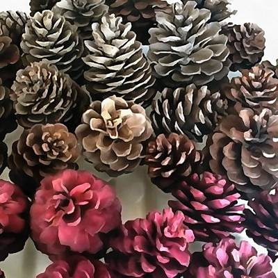 Painting - Organic Pine Cone Holiday Ornaments by Taiche Acrylic Art