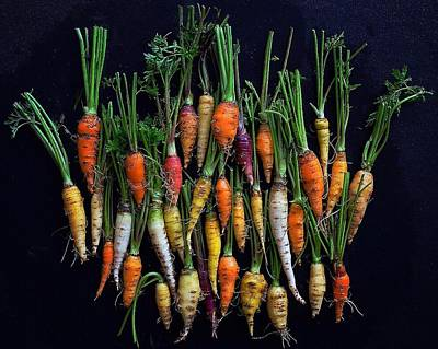 Photograph - Organic Rainbow Carrots by Sarah Phillips