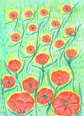Drawing - Ornamental Poppies by Dobrotsvet Art