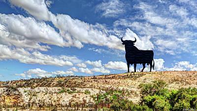 Photograph - Osborne Bull by Weston Westmoreland