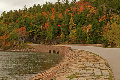 Photograph - Otter Cove by Paul Mangold
