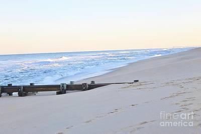 Nautical Animals - Outer Banks Beach 5 by Tonya Hance