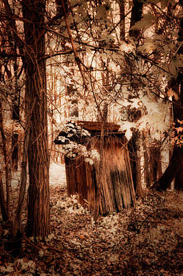 Photograph - Outhouse In The Woods by Paul W Faust - Impressions of Light