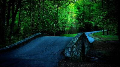 Photograph - Over The Bridge And Through The Woods by Flying Z Photography by Zayne Diamond