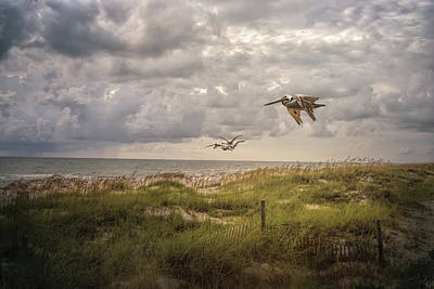 Photograph - Over The Dunes by Jai Johnson