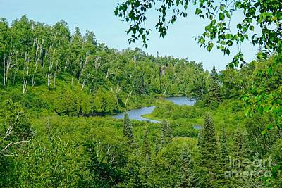 Photograph - Overlooking The Gooseberry River by Susan Rydberg