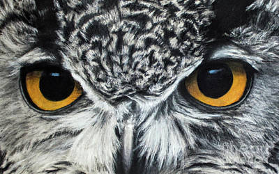 Drawing - Owl Eyes by Michael Cross