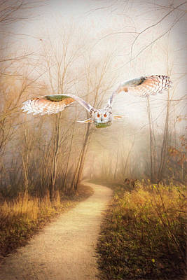 Photograph - Owl In Winter Gold Painting by Debra and Dave Vanderlaan
