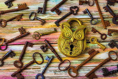 Photograph - Owl Lock And Old Keys by Garry Gay