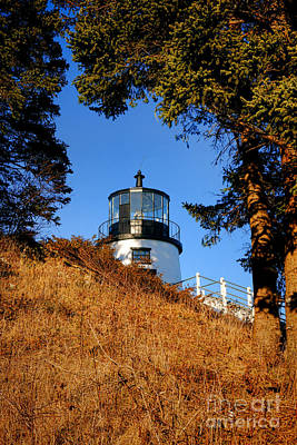Photograph - Owls Head Light First Glimpse  by Olivier Le Queinec