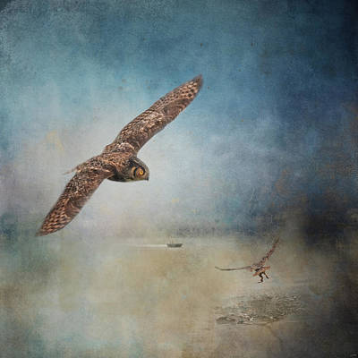 Photograph - Owls On The River by Jai Johnson