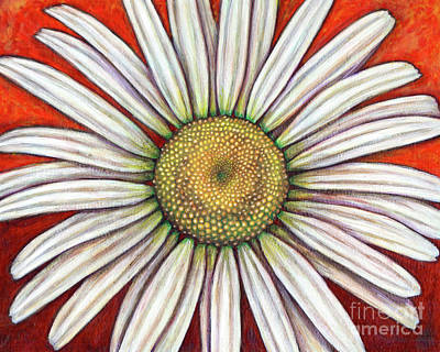 Painting - Ox-eyed Daisy by Amy E Fraser