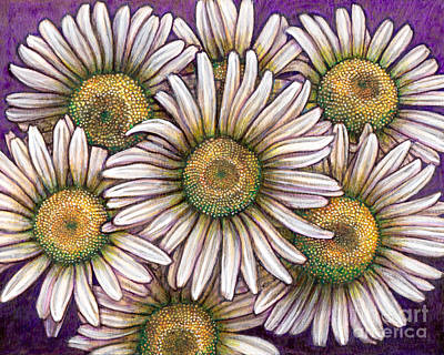 Painting - Ox-eyed Daisy Colony by Amy E Fraser