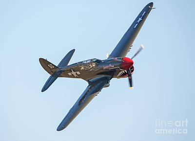 Photograph - P-40 Warhawk Aircraft In Flight by Kevin McCarthy