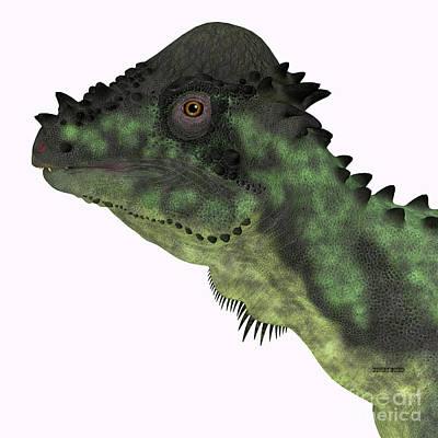 Animals Digital Art - Pachycephalosaurus Dinosaur Head by Corey Ford