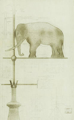Drawing - Pachyderm House, Philadelphia Zoo, Detail Of Weather Vane by Paul Philippe Cret