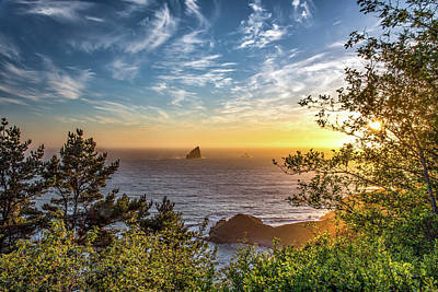 Photograph - Pacific Gold by Leland D Howard
