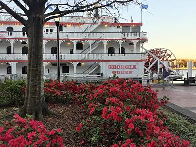 Photograph - Paddlewheeler And Azaleas by Bradford Martin