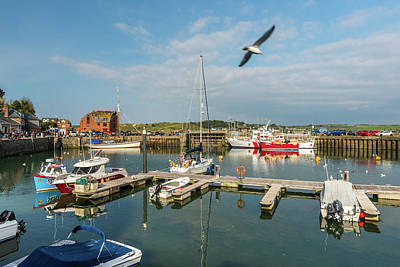 Photograph - Padstow Harbour, Cornwall by David Ross