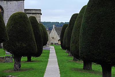 Photograph - Painswick Uk Cotswolds Row Of Yew Trees by Toby McGuire