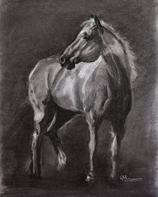 Impressionism Drawings - Paint Pony by Roberta Murray