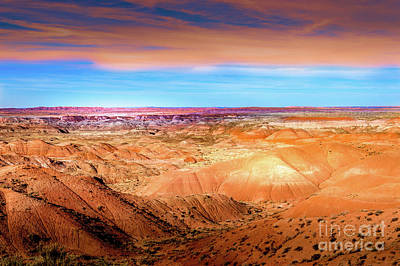 Photograph - Painted Desert Dunes by Blake Webster