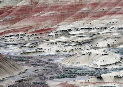Photograph - Painted Hills 2b by Leland D Howard