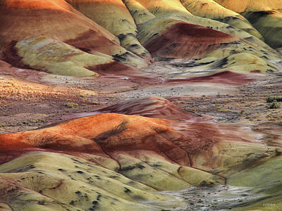 Photograph - Painted Hills Color And Texture by Leland D Howard