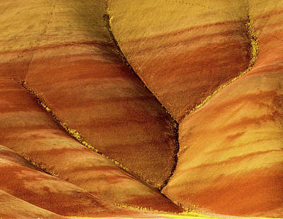 Photograph - Painted Hills Creases by Jean Noren
