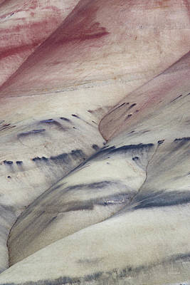 Photograph - Painted Hills Textures 2 by Leland D Howard