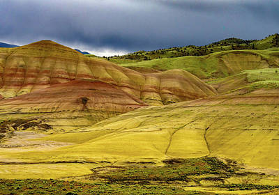 Photograph - Painted Hills Vista by Jean Noren