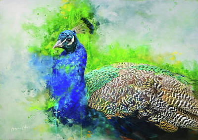 Wall Art - Mixed Media - Painted Peacock by Amanda Lakey