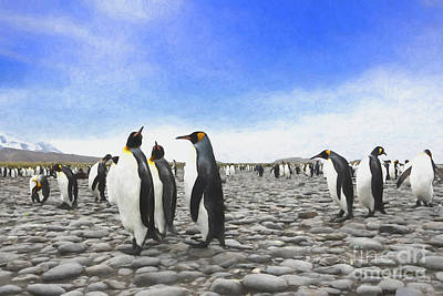 Photograph - Painted Penguins by Patti Schulze