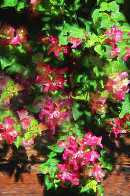 Photograph - Painted Pink Bougainvillea by HH Photography of Florida