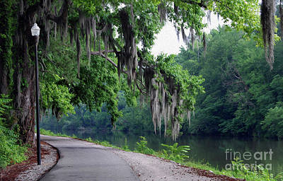 Photograph - Painted Southern Riverwalk by Skip Willits